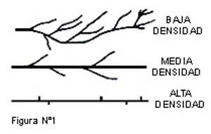 Polietileno-de-Alta-Densidad